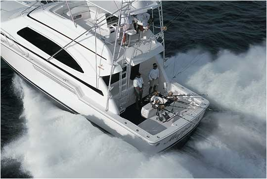 Bertram 510 - Aft-Quarter running picture. Attached Images