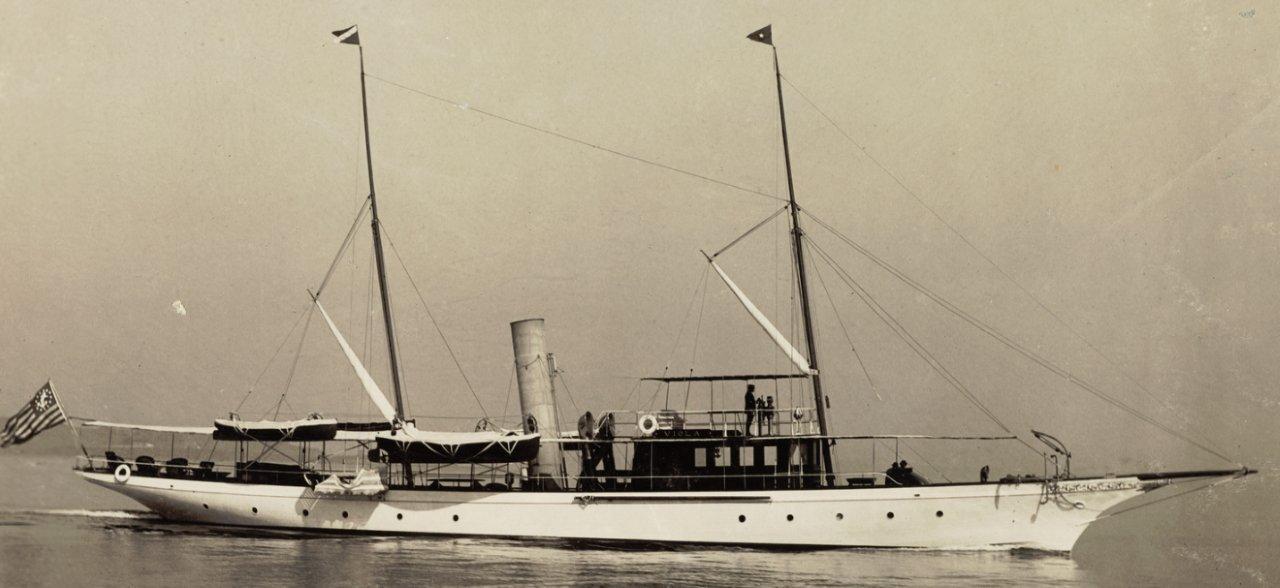 Viola 1895 (3).jpg